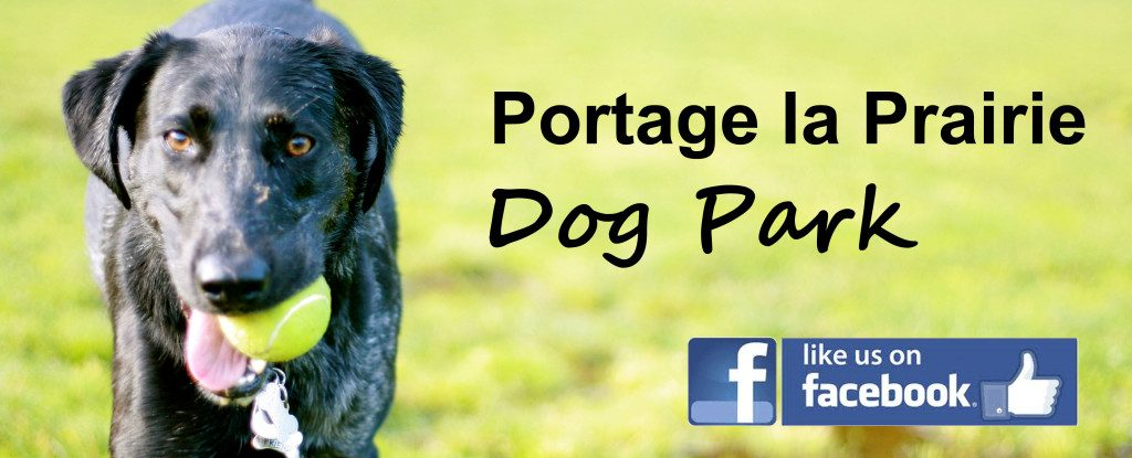 portage la prairie off leash dog park header - dog with a ball and facebook logo