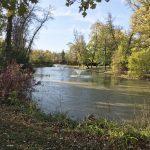 island park pond