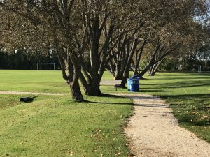 rotary republic park photo walking path